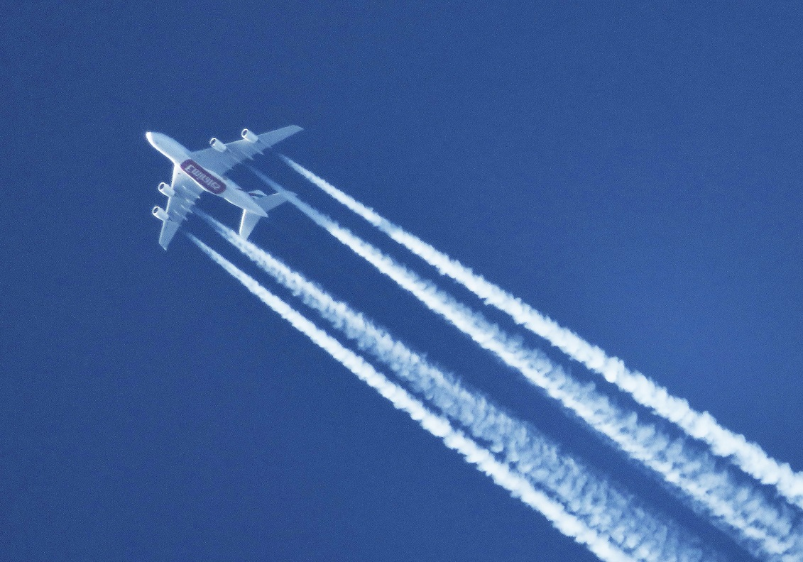 Wohnen in Holz kompensiert 50 Flüge nach Mallorca